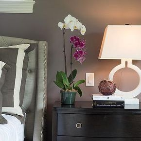 Gray Border Pillows, Transitional, bedroom, Studio M Interiors