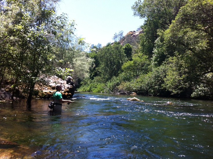 Fishing rivers and the o 39 jays on pinterest for Stanislaus river fishing