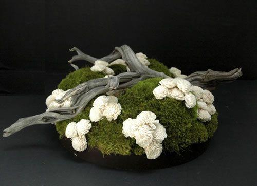 For a naturist - moss, fallen wood, simple floral accent. ((bloemschikken-en-zo))