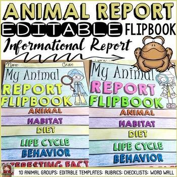 The 25+ best Information report ideas on Pinterest Report - animal report template example