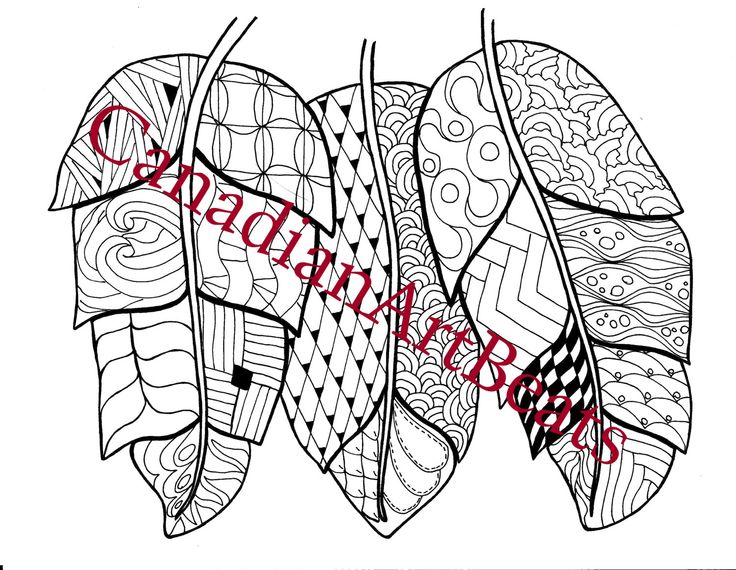feathers bird art feather art downloadable printable coloring page by canadianartbeats on etsy