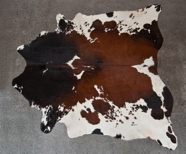 Ph 09 522 1050 For Cowhide Rugs And Animal Skin Floor Covering Chestnut White Hereford Brown Tan Chocolate Cow