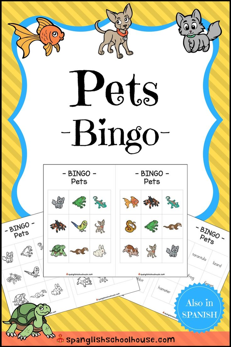 Get ready to practice pet vocabulary with a classic game of BINGO!  There are 30 different player cards, and each card has nine squares.  There are 10 cards of each variation (color, B/W, text only) for different levels of play.  A full color caller card is also included that has the animal with the text underneath.