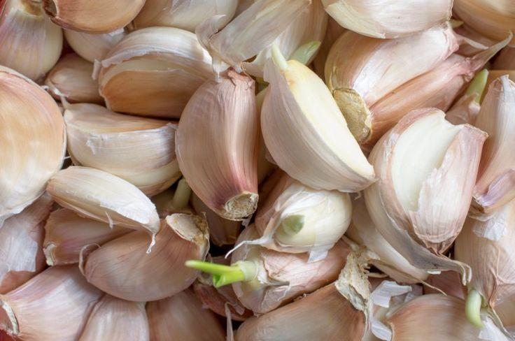 Vitamine naturale. 5 alimente cu care sa inlocuiesti medicamentele - foodstory.stirileprotv.ro