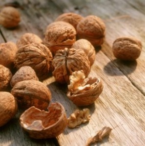 In de herfstvakantie raapten we een tas vol walnoten in de tuin van ons Franse vakantiehuisje.