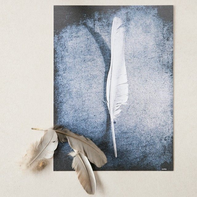 Caro-lines has a new collection of amazing cards with feathers. #nordicdesigncollective #carolines #feather #feathers #card #cards #print #paper #gift #bird #birds #light #lightasafeather #swedishdesigner #swedishdesign #scandinaviandesign