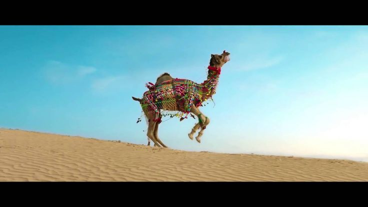 Watch the latest Rajasthan Tourism Music Video - fresh rendition of Rajasthan. #MusicSthan Rajasthan Tourism #Rajasthan #WorldTravelExperiences #JanekyaDikhJaye