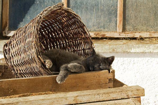 schlafen teen schonheiten