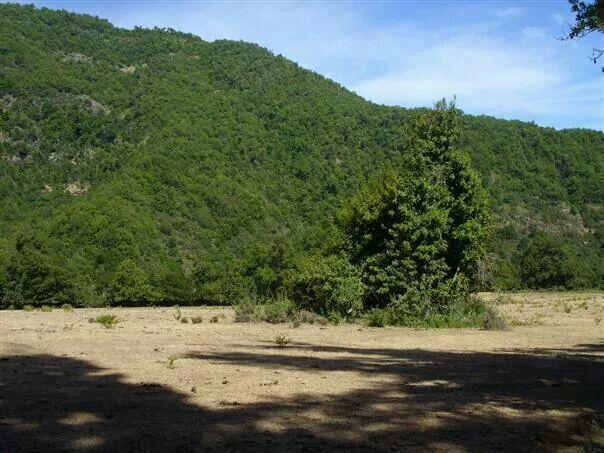 Cerro verde por naturaleza.