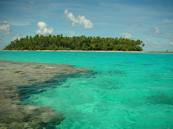 #muryx  #muryxswimwear #tokelau #brown #swimsuit #swim #paradise #bay6