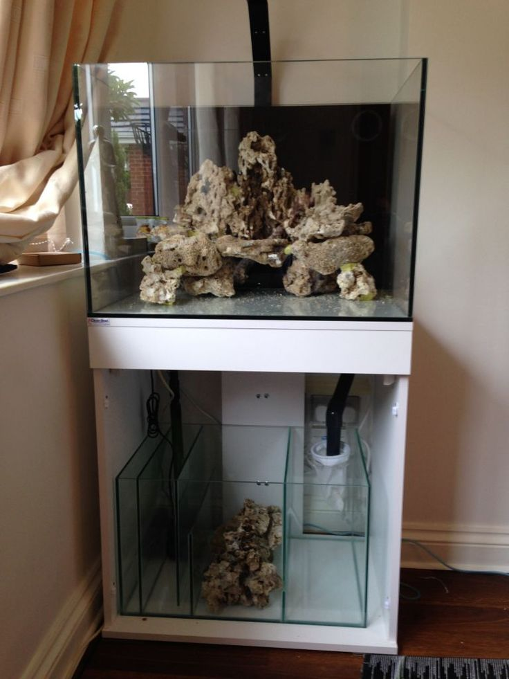 MarkG's new tank clearseal reef space 700 - UltimateReef ...