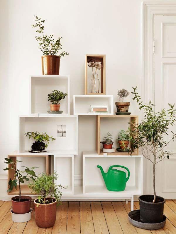 26 Mini Indoor Garden Ideas To Green Your Home   2014 Interior Designs