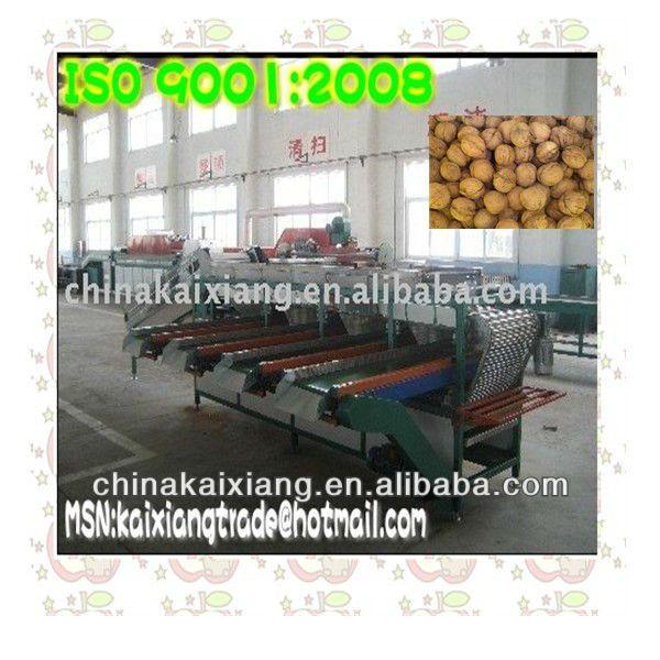 Walnut Sorting Machine (xgj-h Model) - Buy Walnut Sorting Machine,Walnut Grading Machine,Walnut Sorter Product on Alibaba.com