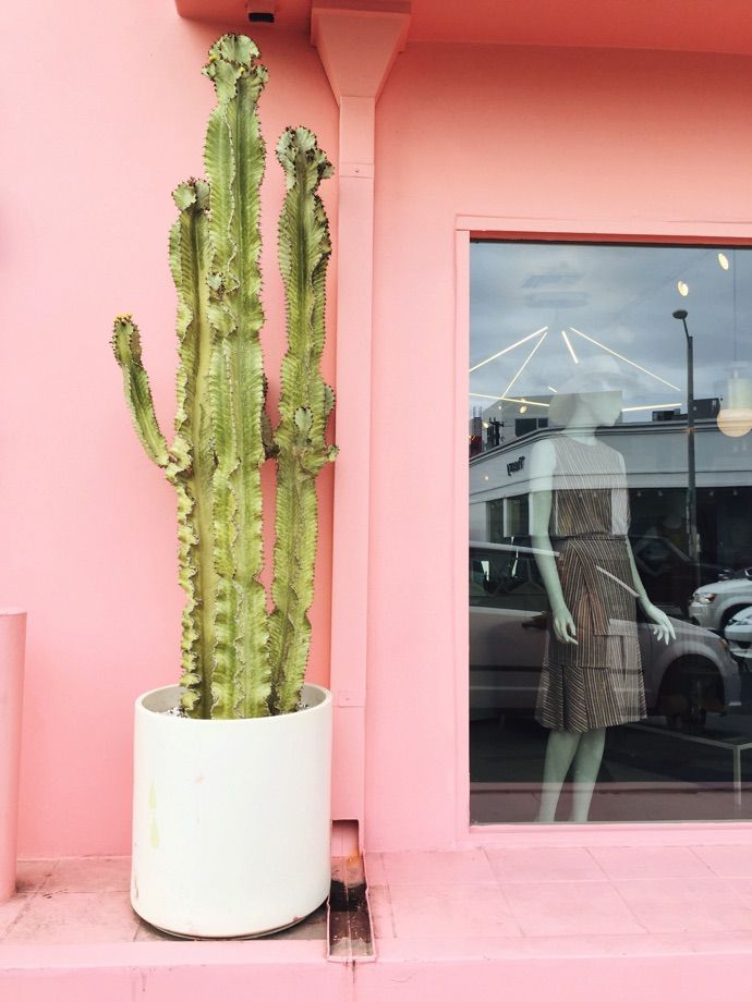 What to see and do in Los Angeles!