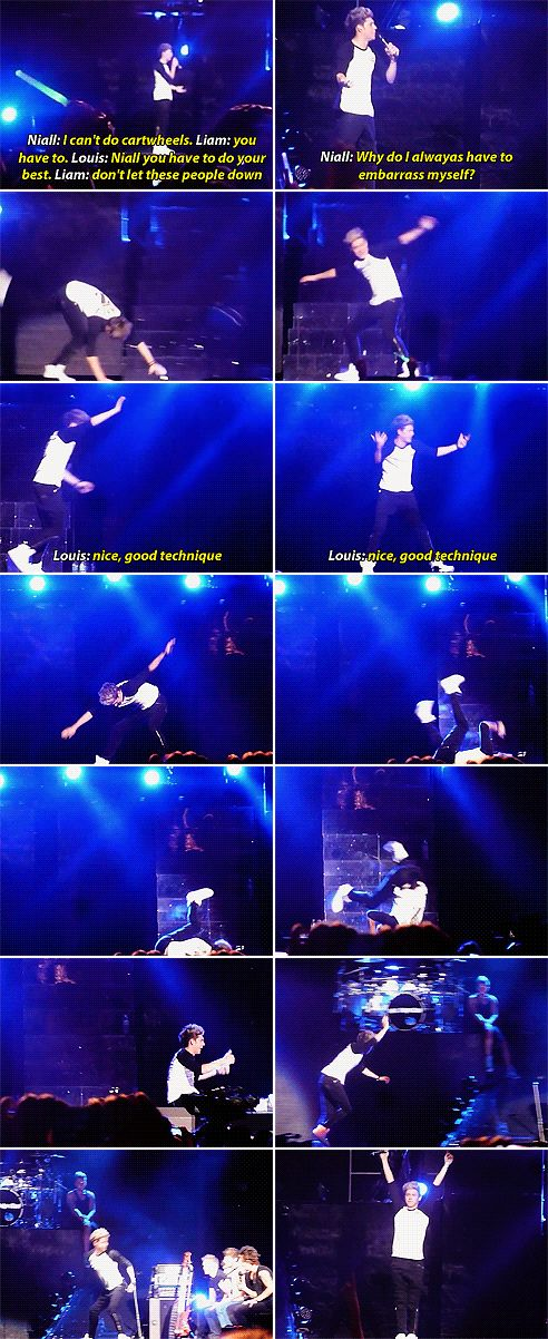 """My new life motto is """"why do I always have to embarrass myself."""" Because I'm Niall Horan, we are one."""