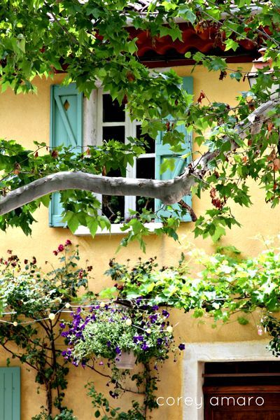 A summer day in Provence.