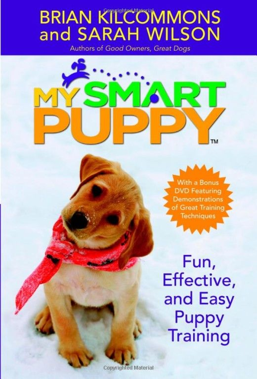 My Smart Puppy: Fun, Effective, and Easy Puppy Training Book