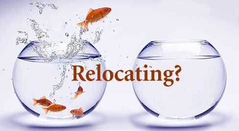 Same day for small office cross city relocation. Call us any time to discuss your needs or for a free quotation. A successful office move is accomplished with planning, skill, and a well-equipped, experienced team.