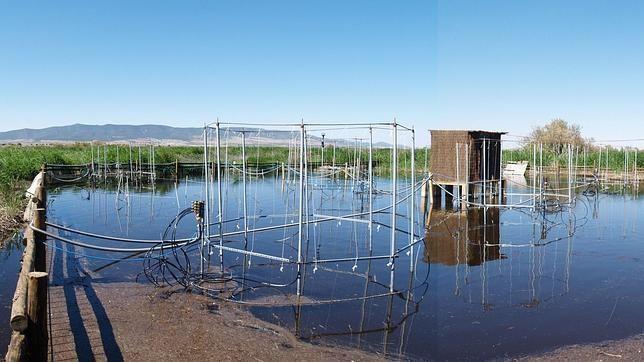 La falta de financiación paraliza un proyecto español pionero en el mundo que mide el impacto del cambio global en humedales