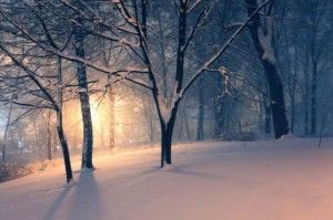 5 Ways to Beat the Winter Blues - Health and Fitness POST