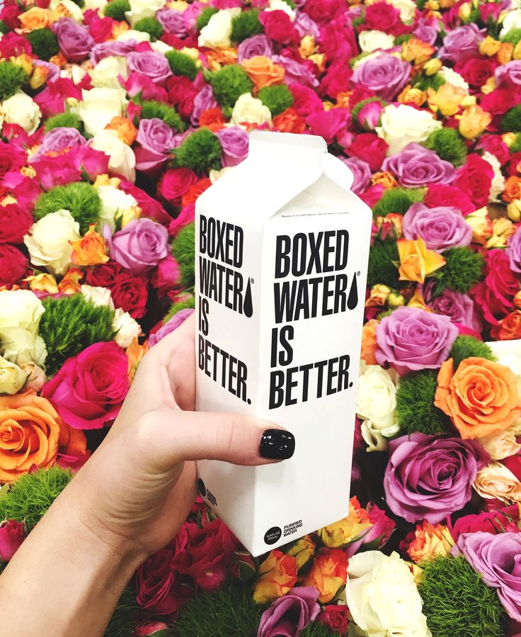 boxed water is better + a bunch of gorgeous flowers.