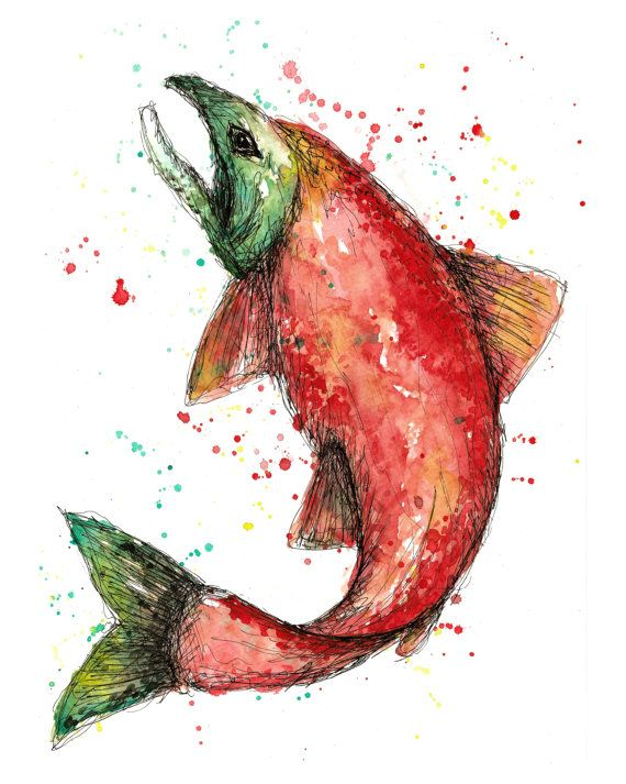 Re-printed on quality canvas, this watercolor of a salmon measures 16 x 20 x .75 (thick). Another option is a print on quality water color paper 16