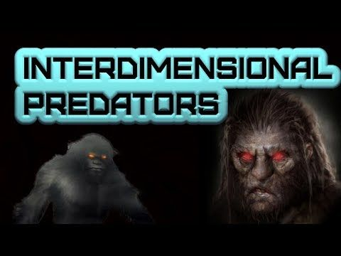 InterDimensional Predators: True scary stories of humans