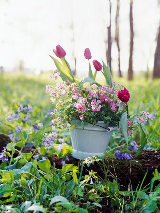 Spring is here and it's time to get busy with your container gardening! See how we used unique containers such as a watering can to create beautiful container gardens. These are low-maintenance container garden ideas you can't pass up! #containtergardens #gardening #flowers