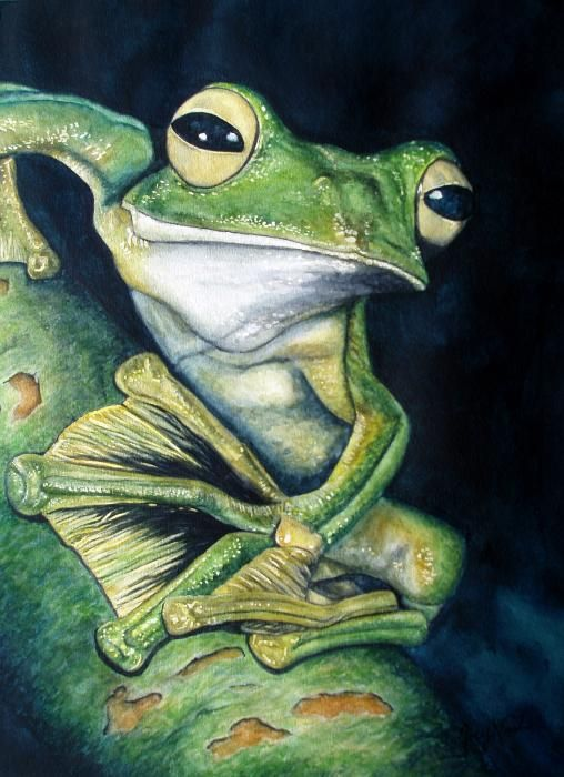 Boreal Flyer Tree Frog Painting by Joey Nash
