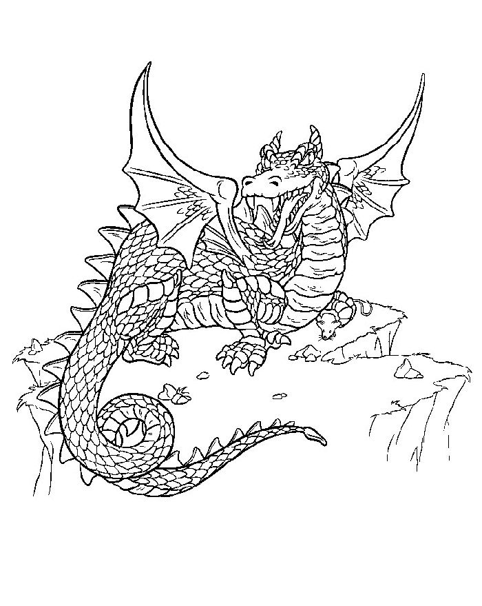Coloring page of dragons printable coloring book sheet online