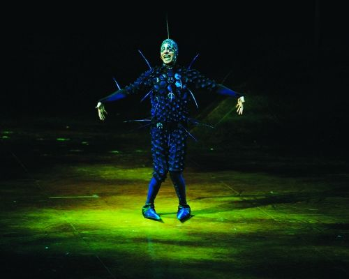 """OVO Cirque du Soleil Pictures: OVO Cirque du Soleil Pictures: The """"Foreigner,"""" a Clown/Insect"""