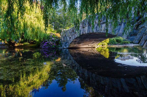 Beacon Hill Park | Things to do in Victoria, BC