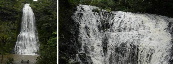 Greater Auckland: Our Top 5 Waterfalls