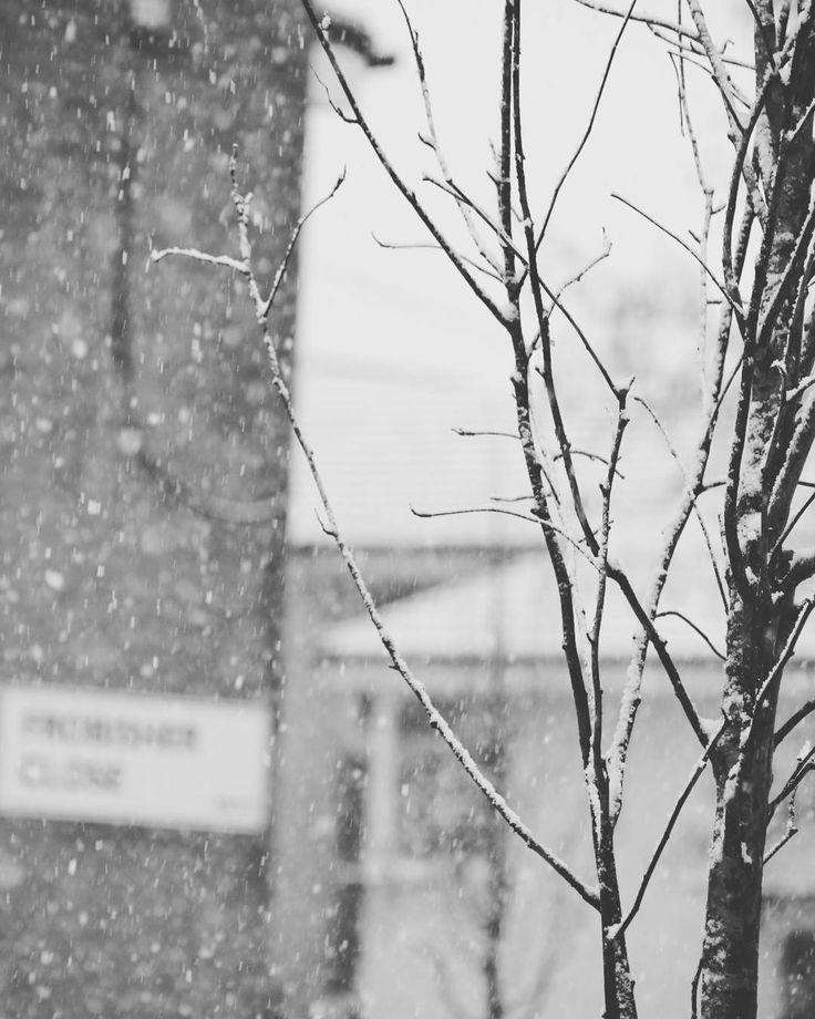 """When snow falls nature listens""  #photography#naturephotography#nature#photo#graphy#landscapephotography#landscape#travelphotography#travel#snowphotography#snow#blackandwhite#white#black#natgeonature #natgeo#nationalgeographic#trees#exploring#exploreworld#explore#world#uk#manchester http://tipsrazzi.com/ipost/1521540770376250897/?code=BUdmUTpjPYR"