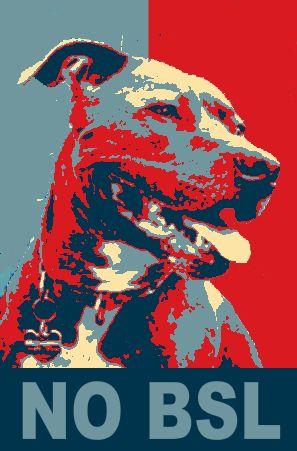"""L'acronimo BSL significa esattamente """"Breed-specific legislation"""", Legislazione specifica di Razza. La legge limita,divieta o condanna la diffusione di alcuni tipi di cane in base al loro aspetto perché in base a esso questi cani sono percepiti come pericolosi. FIGHT BSL!!!"""