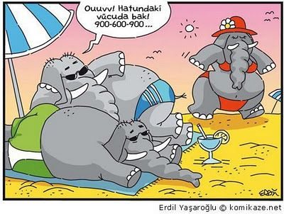 #komik #karikatur #mizah #espri #obezite #sismanlik #zayiflama #kiloverme #diyet