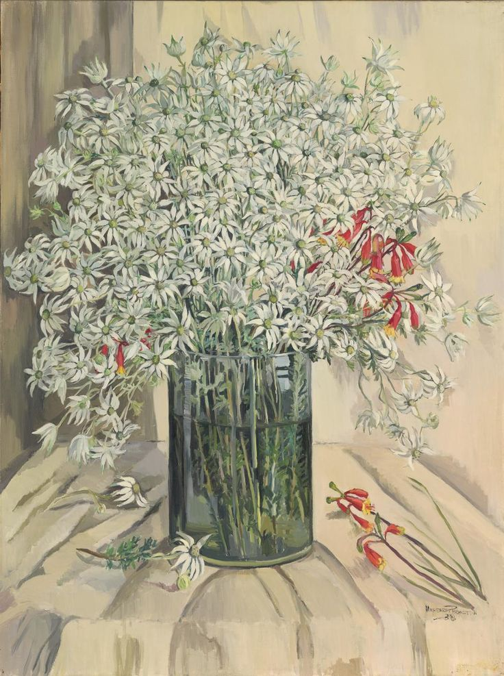Flannel flowers | Margaret PRESTON | NGV