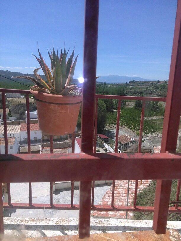 Vistas desde.mi ventana