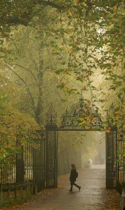 Early morning fog ~ Trinity College Gates, Cambridge, England