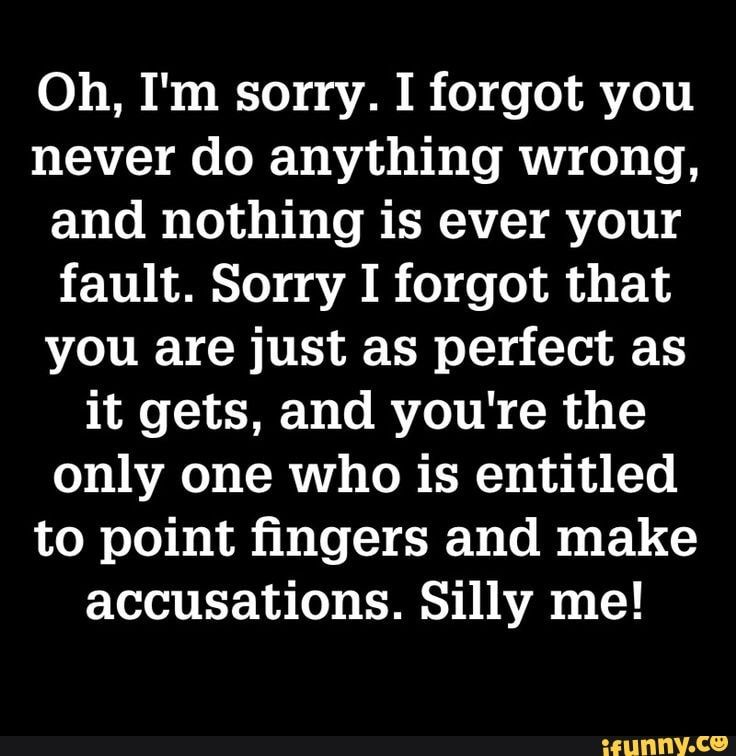 Oh I M Sorry I Forgot You Never Do Anything Wrong And Nothing Is Ever Your Fault Sorry I Forgot That You Are Just As Perfect As It Gets And You Re The Only