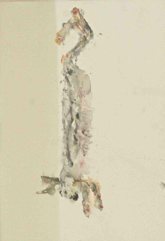 25 beste idee n over aquarel dieren op pinterest pauwen for Dujardin 817