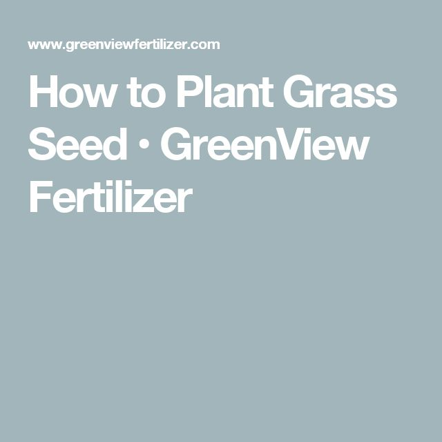 How to Plant Grass Seed                  • GreenView Fertilizer