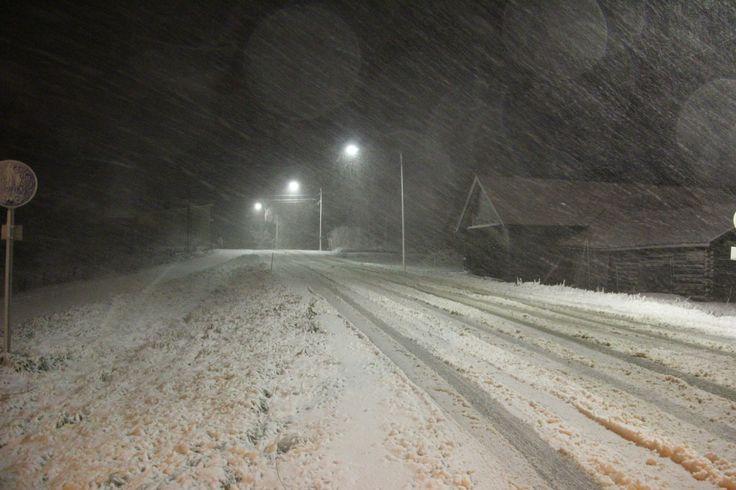 4.11.2014 - Foto Niklas Falk www.niklasfalk.fi