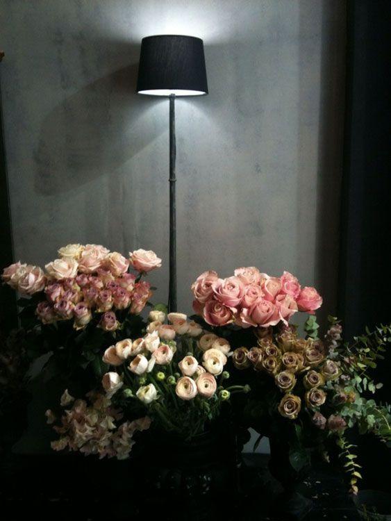 roses pimprenelles, roses galliques, roses cannelles... at Oderantes Paris