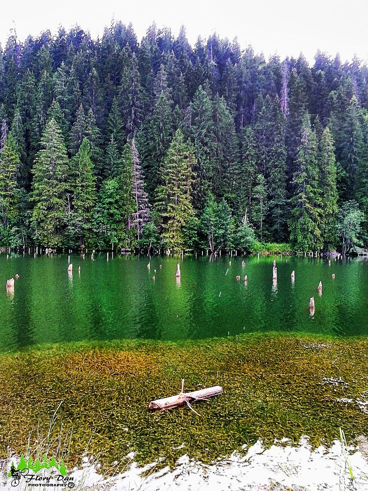 Lacul Roșu