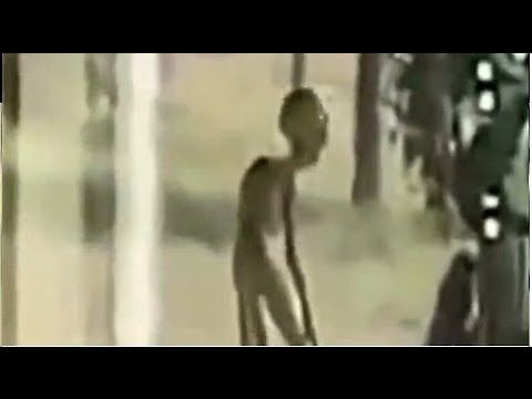 Worlds Most Terrifying Creatures Caught On Tape 2015 - YouTube