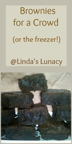 Brownies For a Crowd (or the freezer!) - Linda's Lunacy