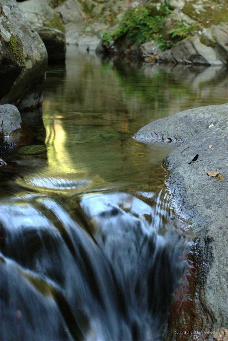 best 25+ eau de source ideas on pinterest | sources eau, journée