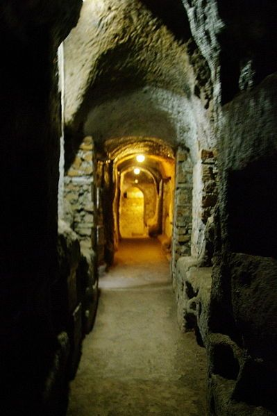 Catacombs of Rome - Early Christian catacombs were extractions from the earth containing niches (loculi). Ladders from ground level led to ambulatories called galleries, where burial plots were located. Catacombs, found throughout the Empire, exist primarily in Rome because the city's density at its height created a shortage of land for burial.