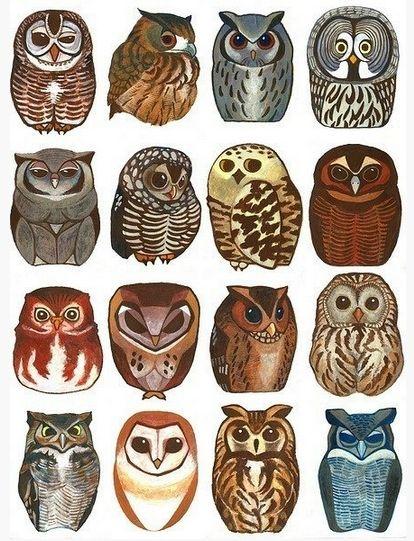 little owl tattoo ideas